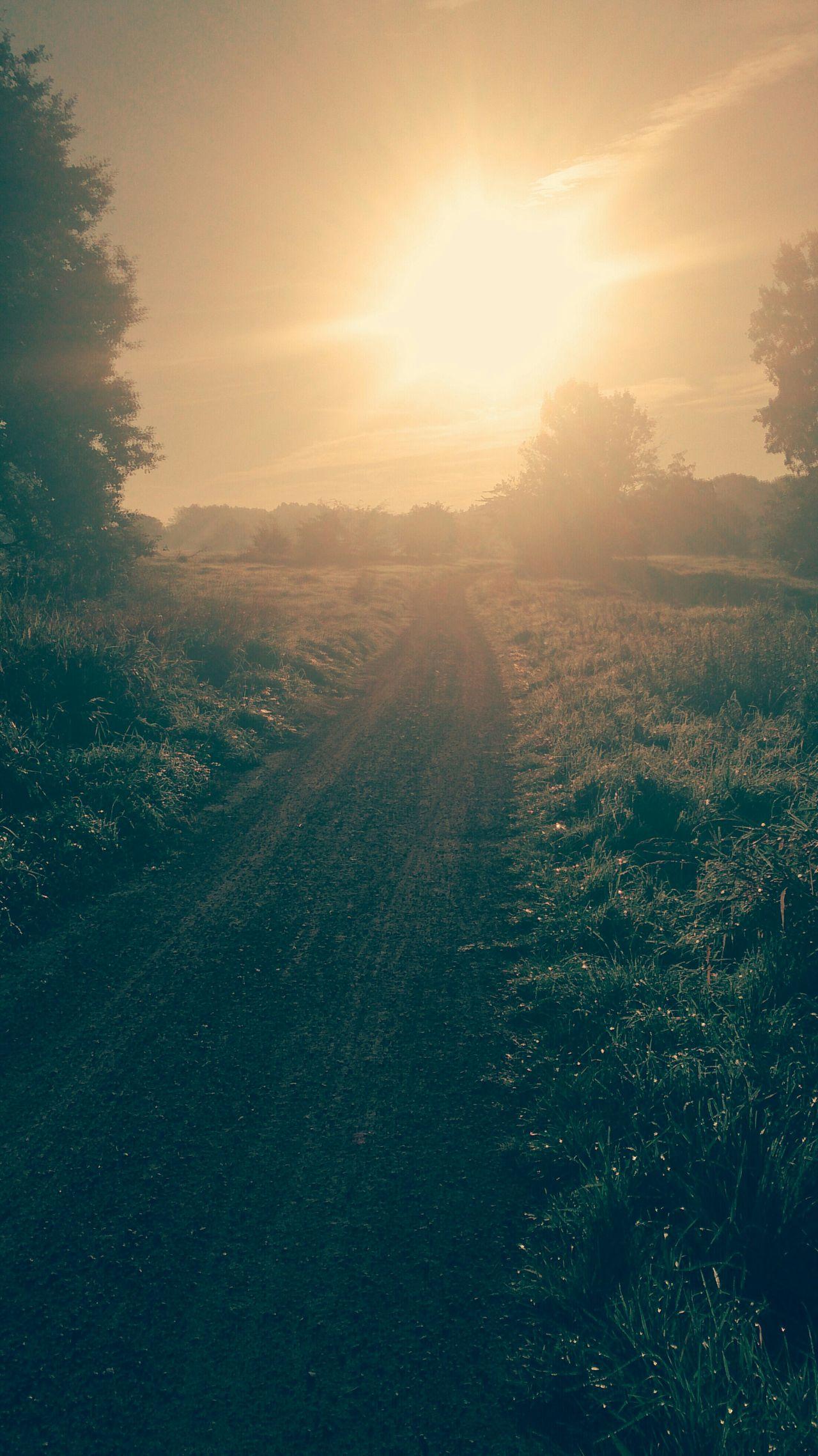 Morning Sunrise Beautiful Sunrise Sunray Amazing Sunrise Sunrise/Sunset Sunrise Wonderful Foggy Morning Enjoying The Sun Beautiful Day