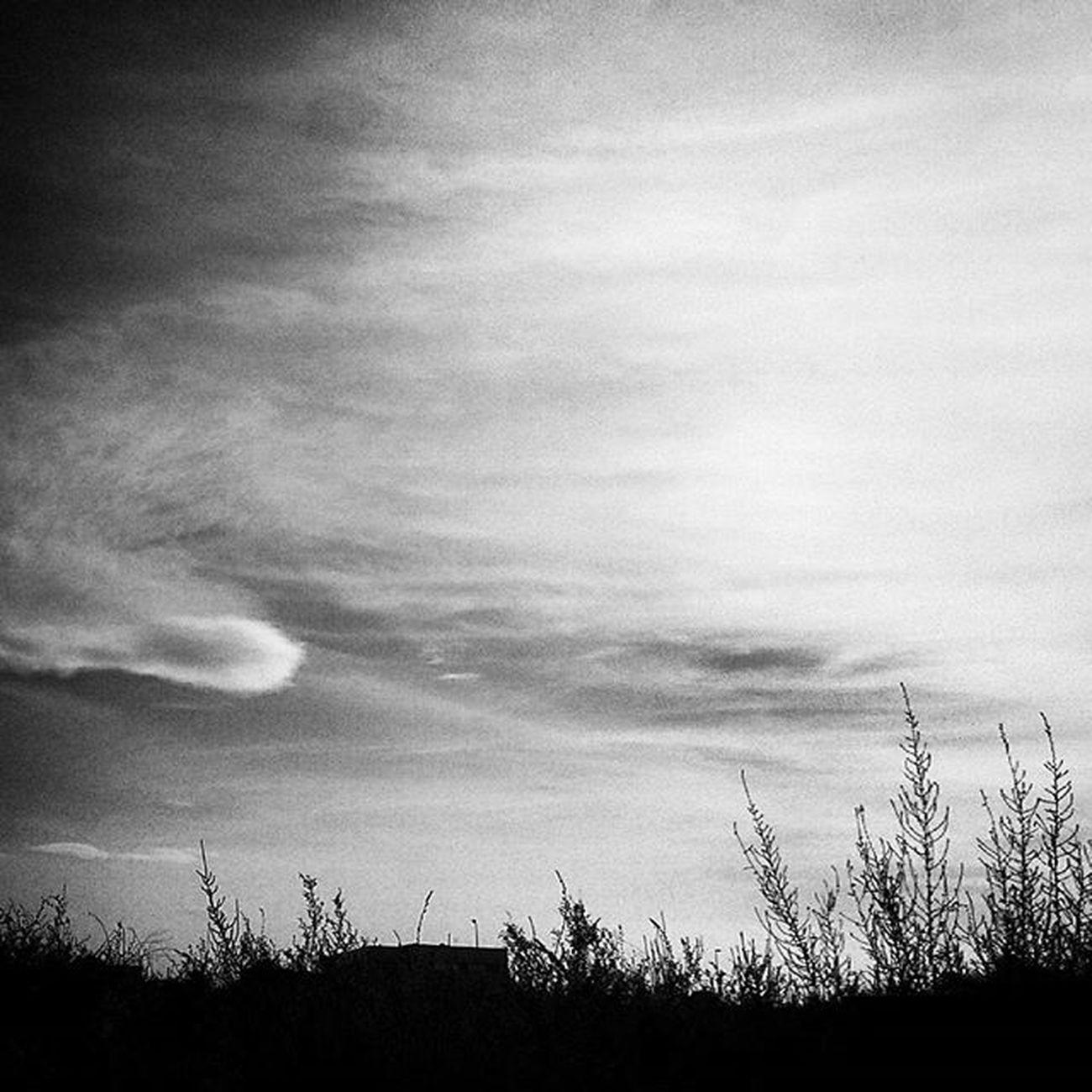 En un planeta extraño. Paisaje Landscape Inscape Mindscape psiconauta psychonaut nomada