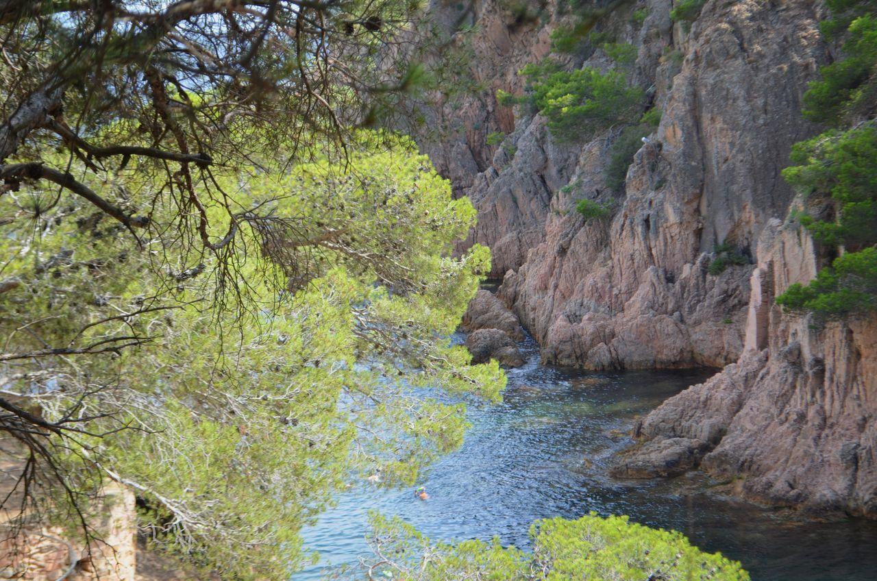 Mediterranean  Costa Brava EyeEm Nature Lover EyeEm Gallery Seaside Cala