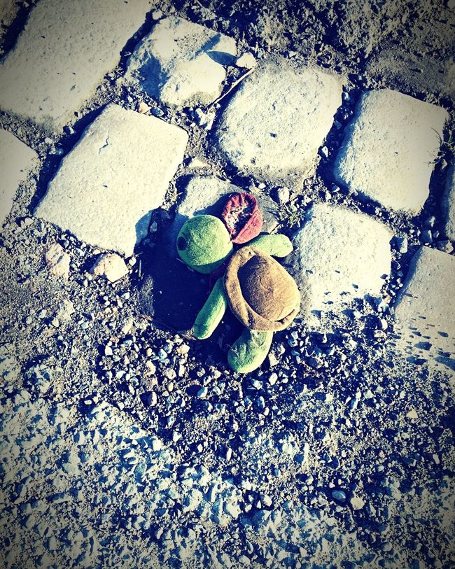 Check This Out @lesphotosdericou Streetphotography IPhoneography France Paris Like Plush Alone