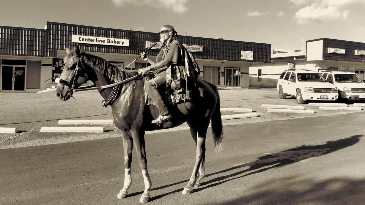 Horse One Animal Animal Themes Horsepower An old friend was kind enough to stop for this photo. The Old And The New Working Animal Outdoors Black And White St.Croix, US Virgin Islands