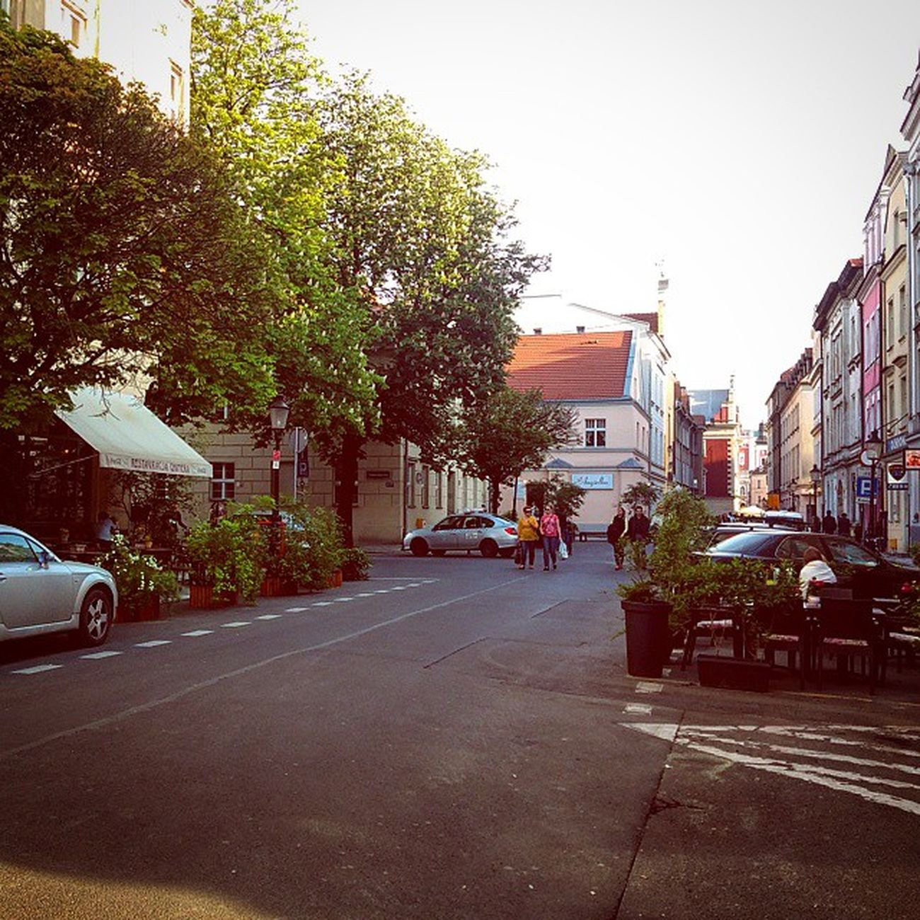 Old Town becomes green Oldmarket Historic District Oldtown downtown trees cafe architect architektura architecture city town urban street instalike instagood igerspoznan art Poznan Poland architecturelovers architectureporn architecturephotography picoftheday bestarchitecture best good