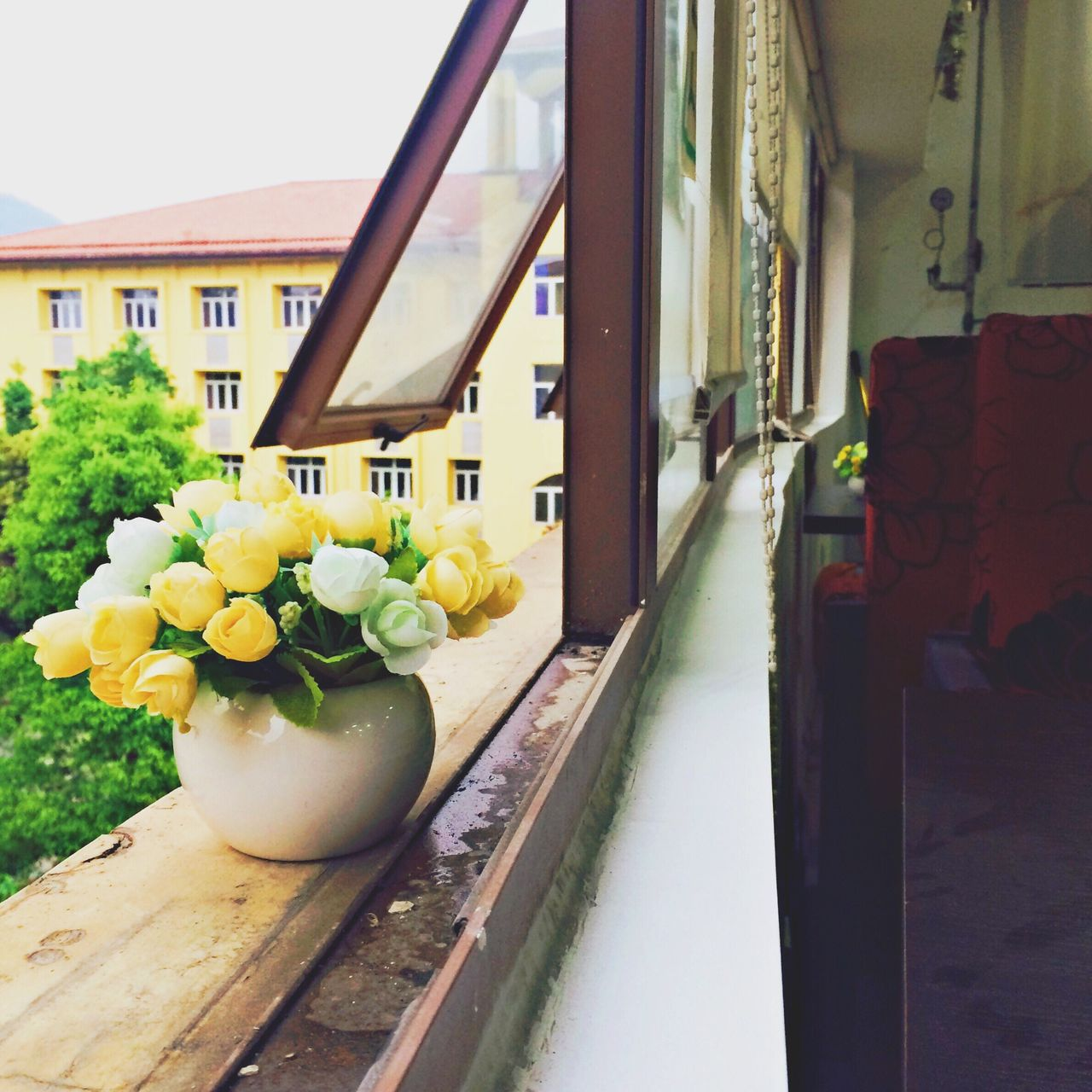 flower, architecture, window, no people, built structure, building exterior, day, nature, close-up, outdoors, sky