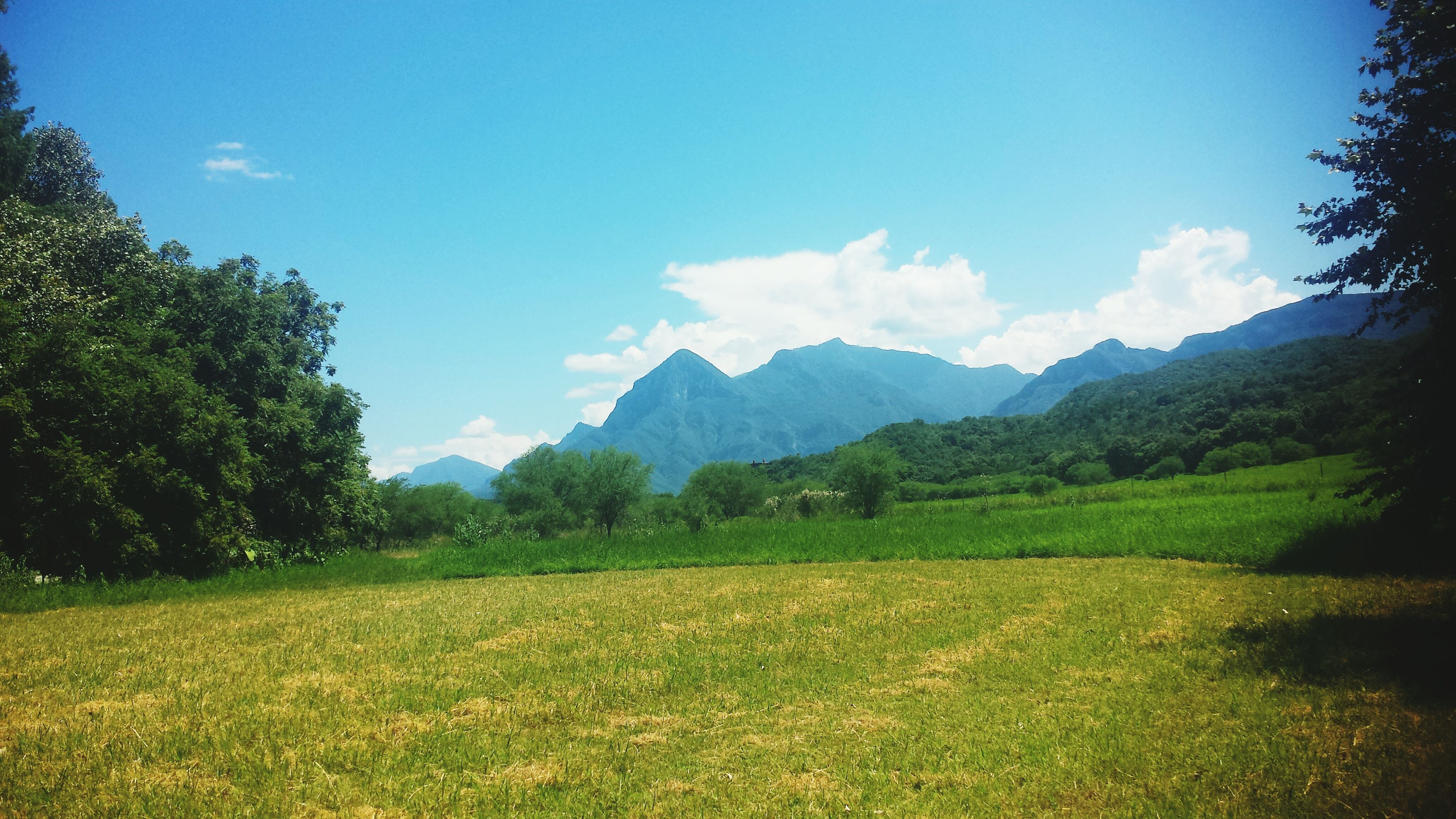 mountain, tranquil scene, tranquility, landscape, sky, tree, scenics, beauty in nature, nature, mountain range, grass, green color, blue, growth, field, non-urban scene, cloud, idyllic, countryside, cloud - sky