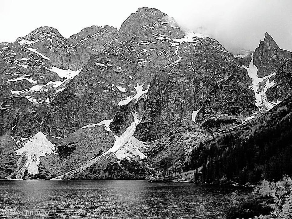 Outdoors Forest Reflection Lake Tranquil Scene Tranquility Beauty In Nature Travel Destinations Polska, Poland Mountains Photography Morskieoko Morskie Oko Morskie Oko - Poland Scenics Nature Lake Tree Blackandwhite Black And White Blackandwhite Photography Black And White Photography Blackandwhitephotography Plant Mountain Day