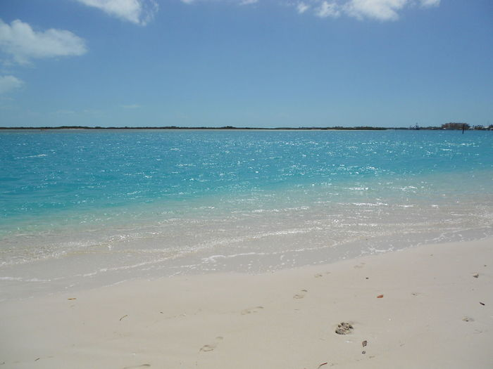 Beach Beauty In Nature Blue Sky Caraibbean Trip Clouds And Sky Clubmed Coastline Nature Travel Ocean Outdoors Paradise Playa Sea Sea Waves Shore Tranquil Scene Tranquility Turks And Caicos Turks And Caicos Islands Turquoise Turquoise Water Water Waves Landscape