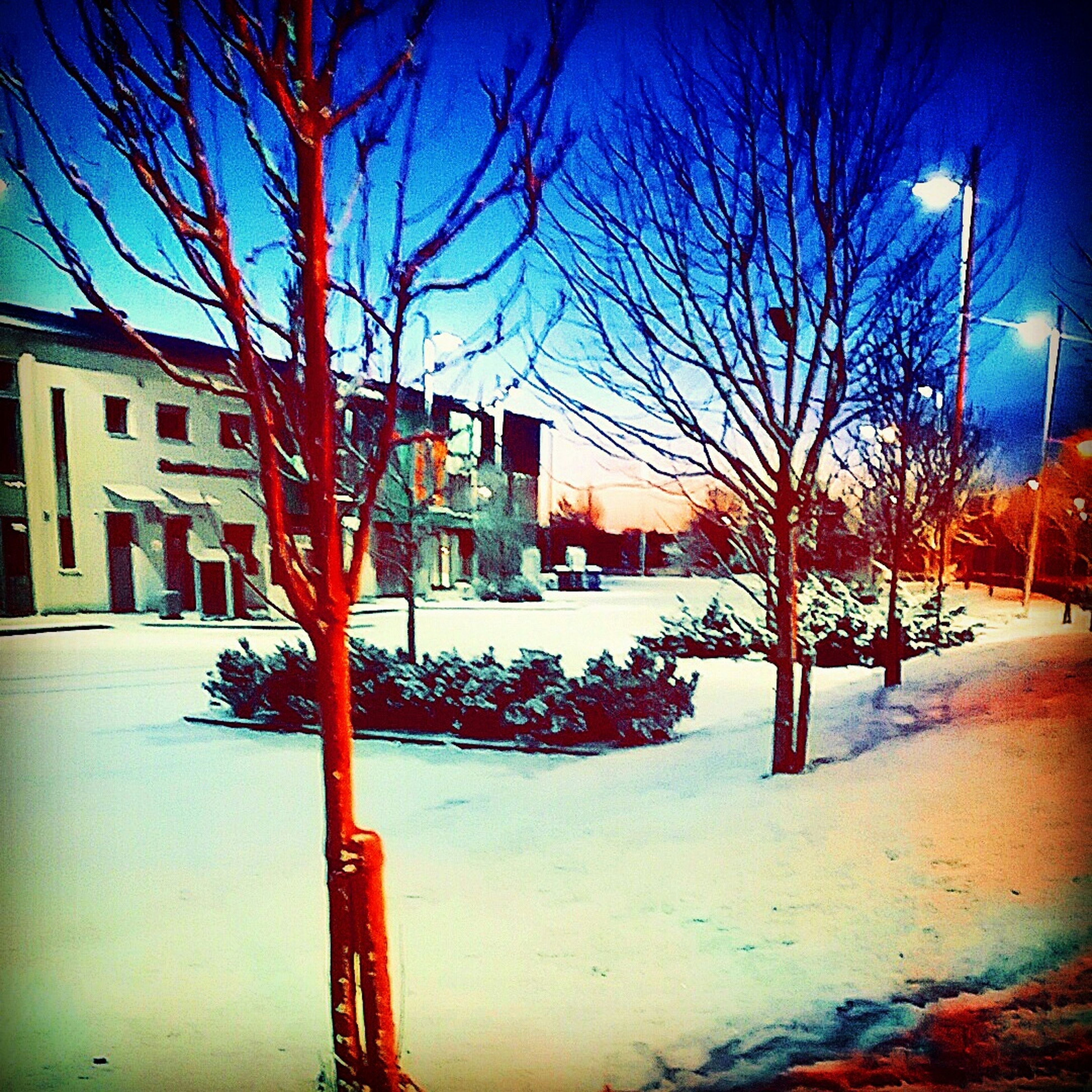 Snow ❄ Walking To Work Colourful