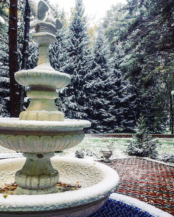 Tree Park Footpath Beauty In Nature No People Nature Day Majestic Garden Fountain Snow October Snow In October Beauty In Nature Tree