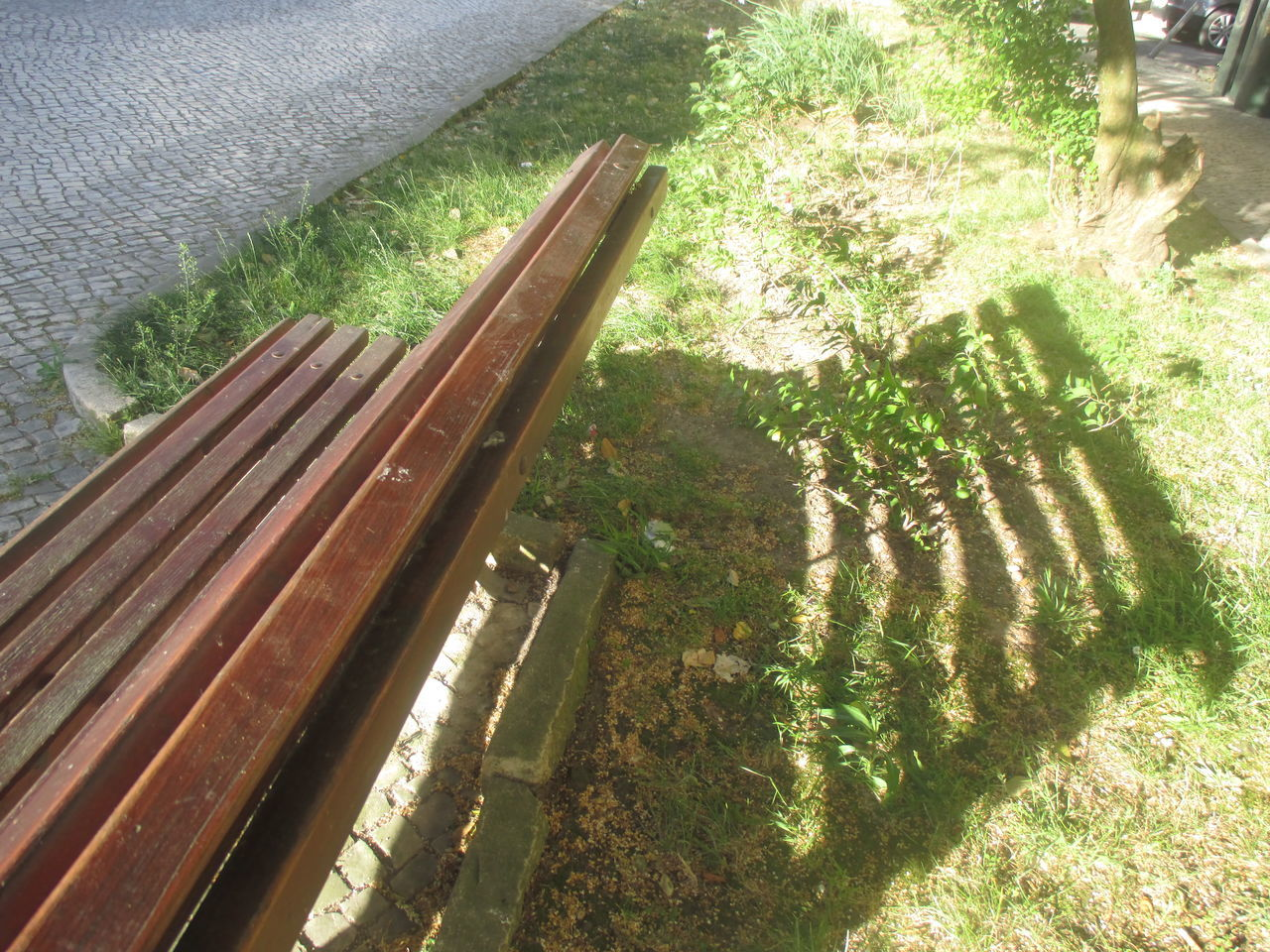 #shadow Of The Bench Ater Ego Of A Bench Beautiful Shadow Beauty In Nature Bench Bench In The Park Bushes Day Empty Bench Grass Growth Growth Interesting Shadows Loneliness Nature Nice Day Nice Weather No People Outdoors Park Plant Romantic Shadow Sunlight Sunny Day