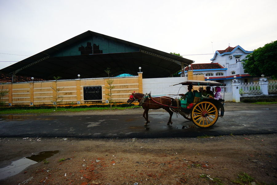Andong in Lasem Andong Transportation Street Photography Street Capture Photography Photooftheday Photo Traditional Transportation Chariot Lasem  Old City INDONESIA Built Structure Outdoors Day Architecture Building Exterior Sky No People