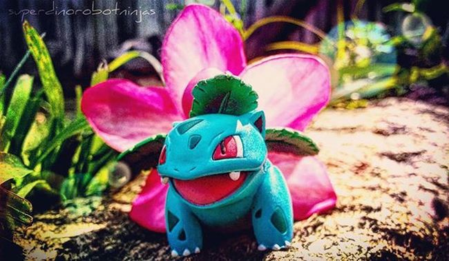 PokéJournal Entry No. ???: Here we see an Ivysaur apparently guarding another's flower after it bloomed and evolved into a Venusaur . The flower is known for having such a relaxing aroma it is sometimes used in calming rampaging Primeape. Tga_callingcard