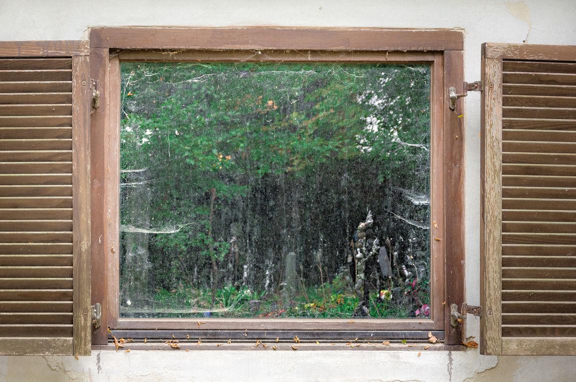 Cemetery Friedhof Der Namenlosen Alberner Hafen Vienna EyeEm Best Shots Window Reflection Window Reflection Windowreflection