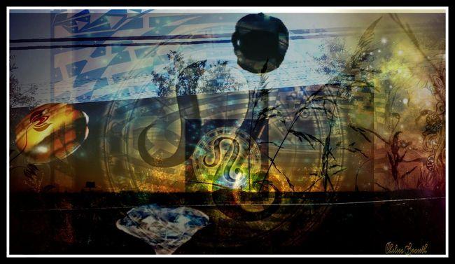 Qp Check This Out Sacramento My Artwork My Art, My Soul... MYArtwork❤ Leo Leo Lion LEOS RULE Sacramento River Sunrise N Sunsets Worldwide
