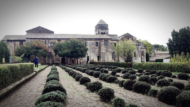 Architecture France Provence Travel Destinations Cloister Vangogh Tranquility Mediterranean  Remote Idyllic Built Structure Solitude