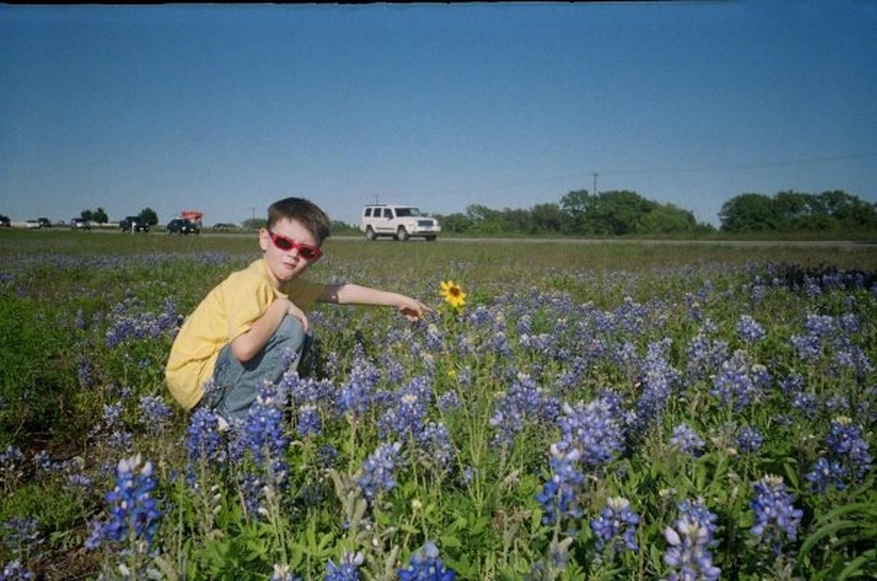 Texas Bluebonnets Lonely Daisy My Heart ♡ Favorite Son 2007