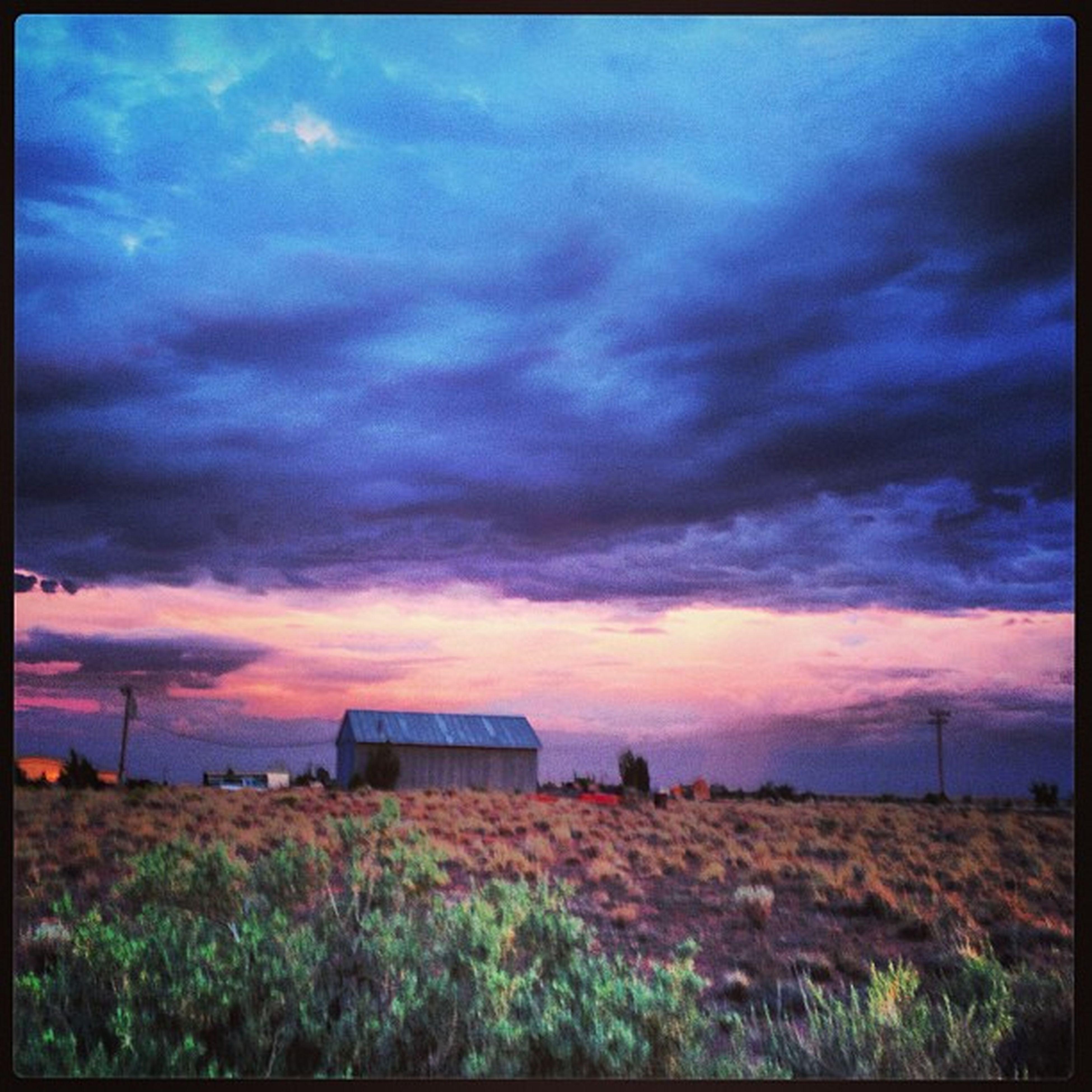 Pinknblue Purplenpink Greenfoliage Field clouds cloudy country countryrd countryroad barn farmhome az arizona azsunset arizonasunset holbrook holbrookaz josephcity mclawsrd cattlerunrd