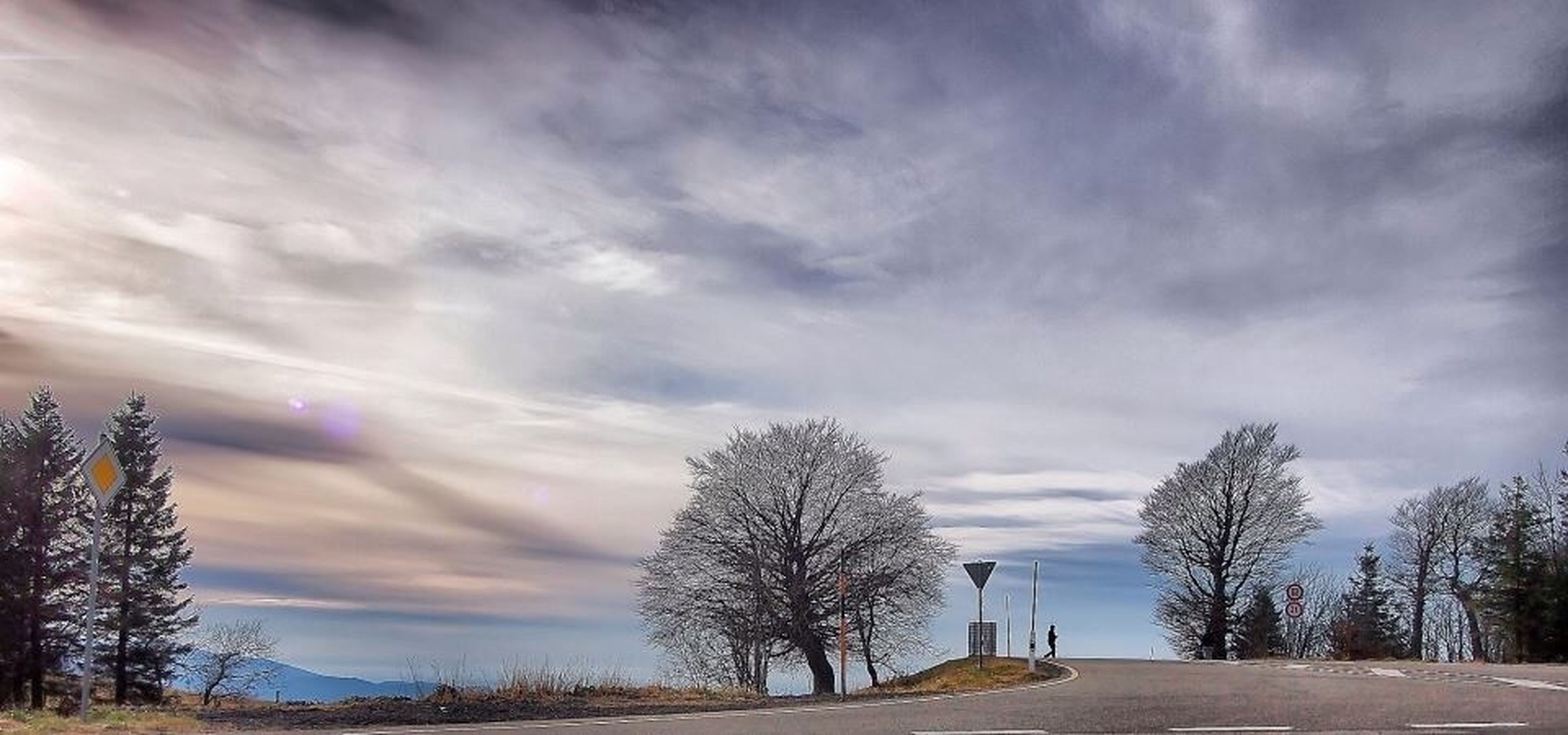 sky, tree, cloud - sky, tranquility, cloudy, tranquil scene, the way forward, bare tree, beauty in nature, scenics, nature, weather, cloud, road, outdoors, landscape, no people, branch, overcast, low angle view