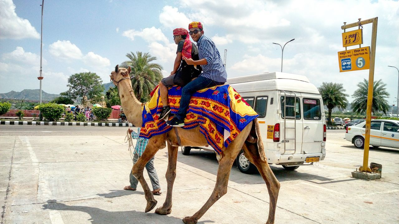 SWAG ♥ Camelriding Awesome_shots Life's Simple Pleasures... 😎 EyeEmNewHere