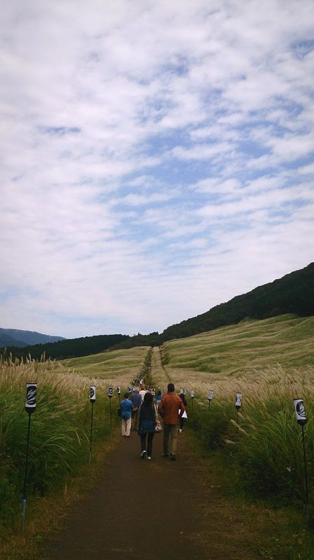 People Nature Sky Clouds And Sky Traveling Silver Grass Japanese Silver Grass