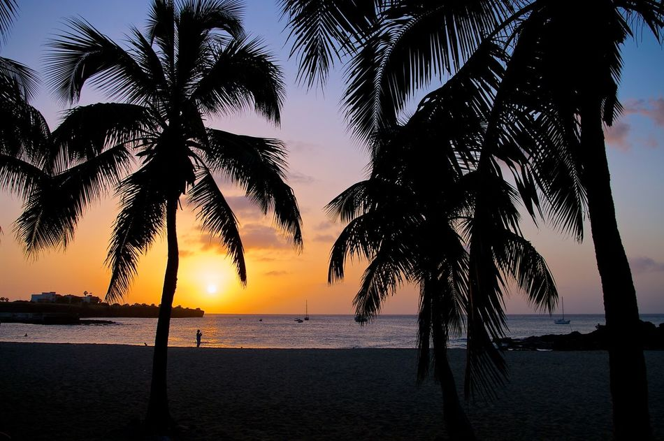 A beautiful sunset on the beach in Tarrafal, the only sandy beach on the island Santiago from Capo Verde. Beach Beachphotography Capo Verde Ocean Palm Trees Santiago Sunset Tarrafal Travel Travel Photography Water