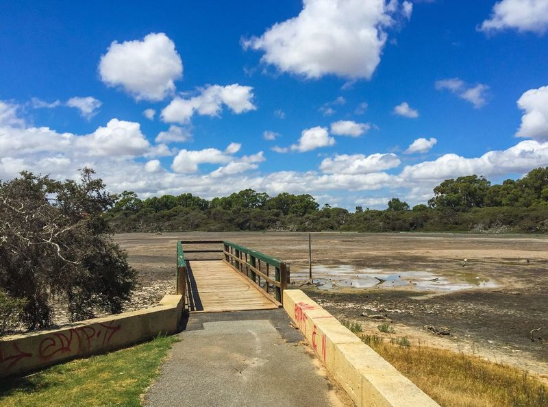 Market Garden Swamp Swamp Wetland Market Garden Swamp Drought Dried Conservation Reserve Nature Trees Jetty Pier Dock Western Australia Spearwood Wooden Bridge Outdoor Photography Peaceful Place Tranquil Scene Desolate Dried Wetland Clouds And Sky Blue Sky Cumulus Dried Up Lake Quiet