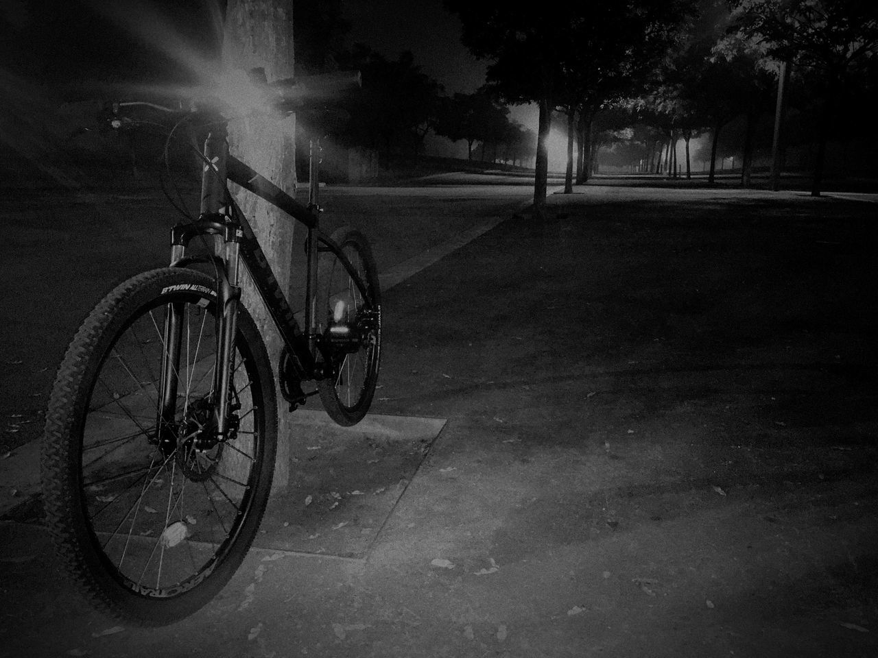 Partner in crime Badalona Barcelona Bicycle Bici CyclingUnites Blackandwhite Neblina Noche