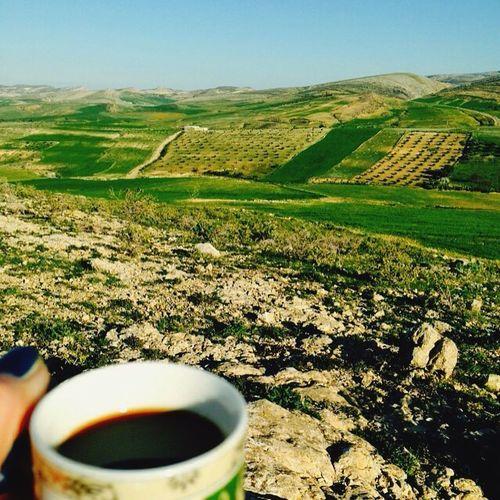 Landscape Nature Tunisia <3 Tunisia Kef Paysage Escape Spring Freshair Freemind
