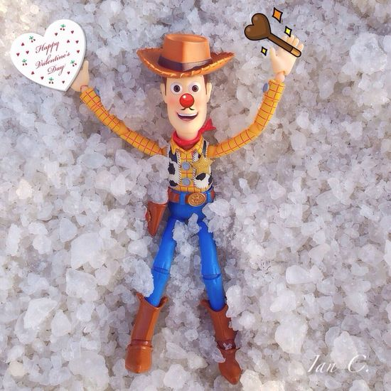 Whiteday Woody Valentine Toys ?white day?