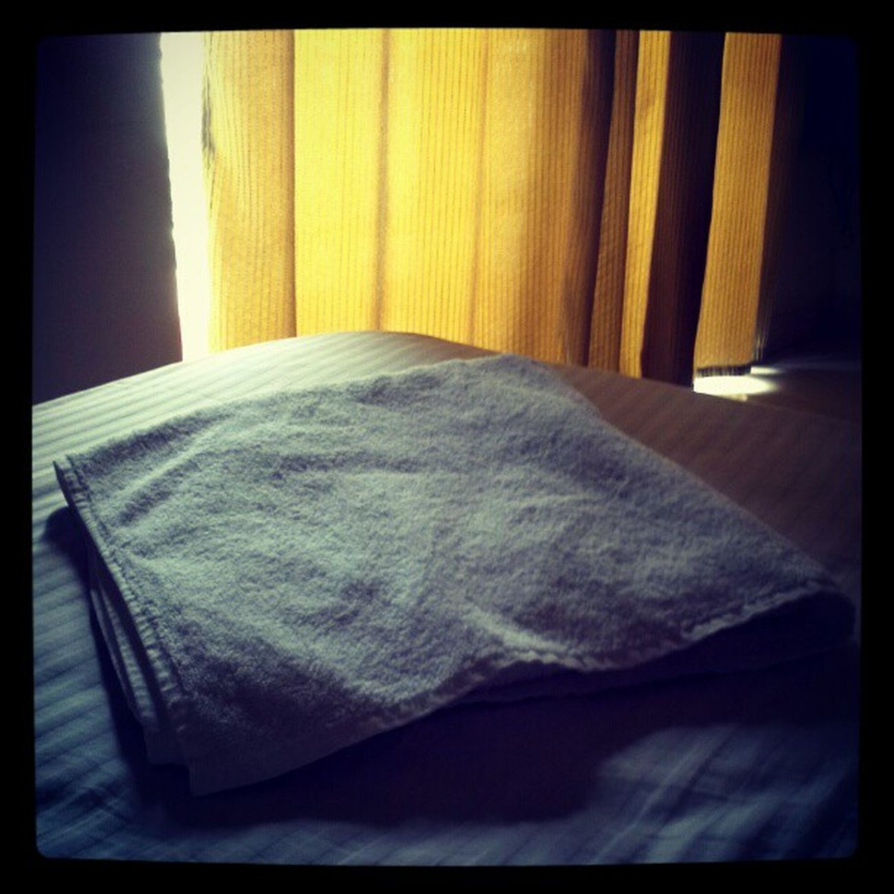 Celebrating Towelday alone in the hotel room. Happy Towelday !!