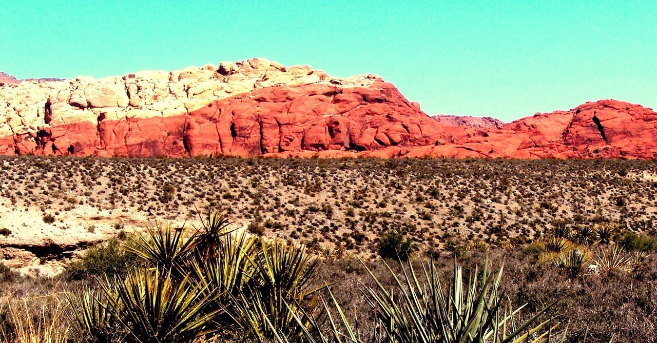 Red Rock Canyon. Red Rock Canyon
