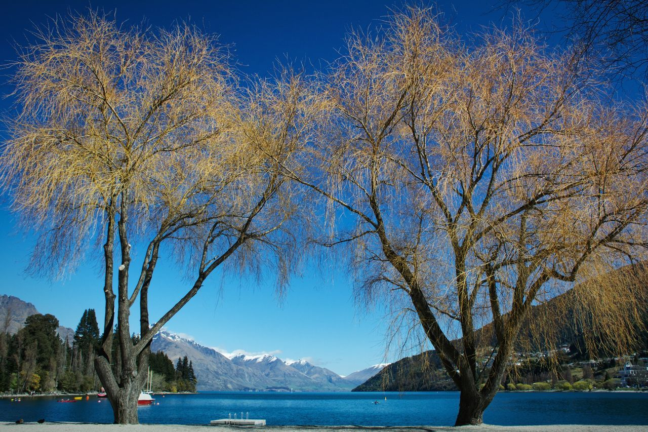 Travelling Fiordland New Zealand NZ South Island Showcase: November Queenstown Lake View Lake Wakatipu Tourist Travel Blue Mountain View Snow Capped Mountains Landscapes With WhiteWall
