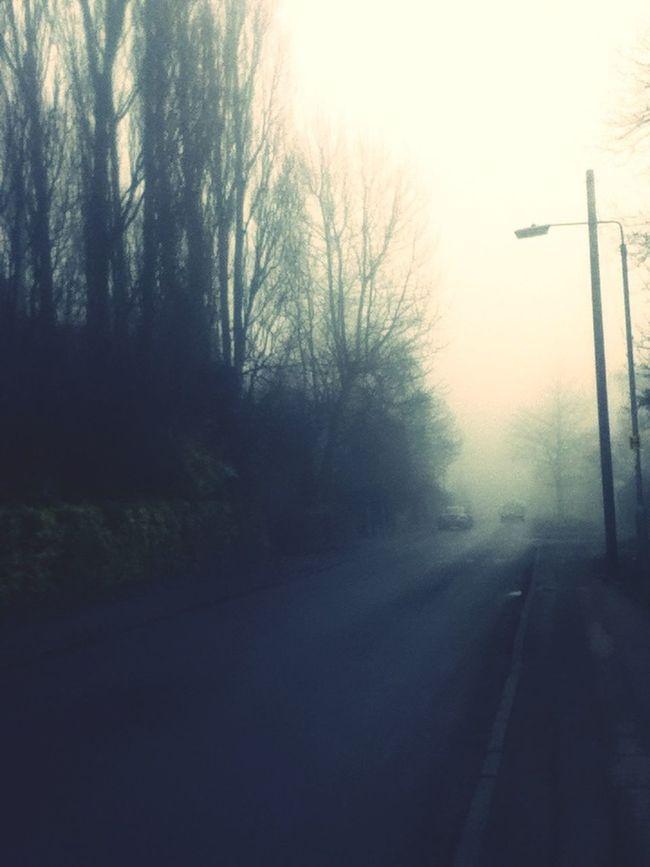 Fog Making Things Feel Eerie.