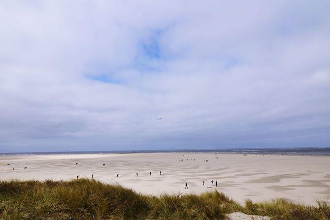 Beach Nederland Texel  Texelstrand