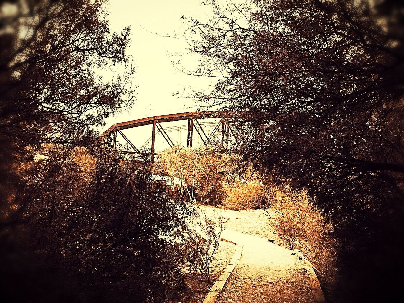 Ocean To Ocean Bridge Arizona Walking Path Filters Sepia Nature Photography Nature Bridge - Man Made Structure IPhone Photography Outdoors At Peace With Myself  One Man Outside Photography Loving Nature