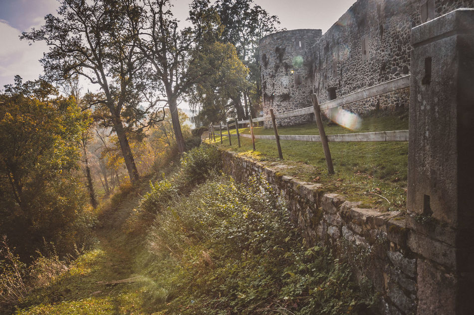 Take your place on the borderland. Autumn Beauty In Nature Borderland Castle Castle Ruin Close-up Contre-jour Day Fence Finding New Frontiers Forest Frontier Grass Growth Leading Lines Lens Flare Nature No People Outdoors Path Pillar Sky Trail Tree Wall