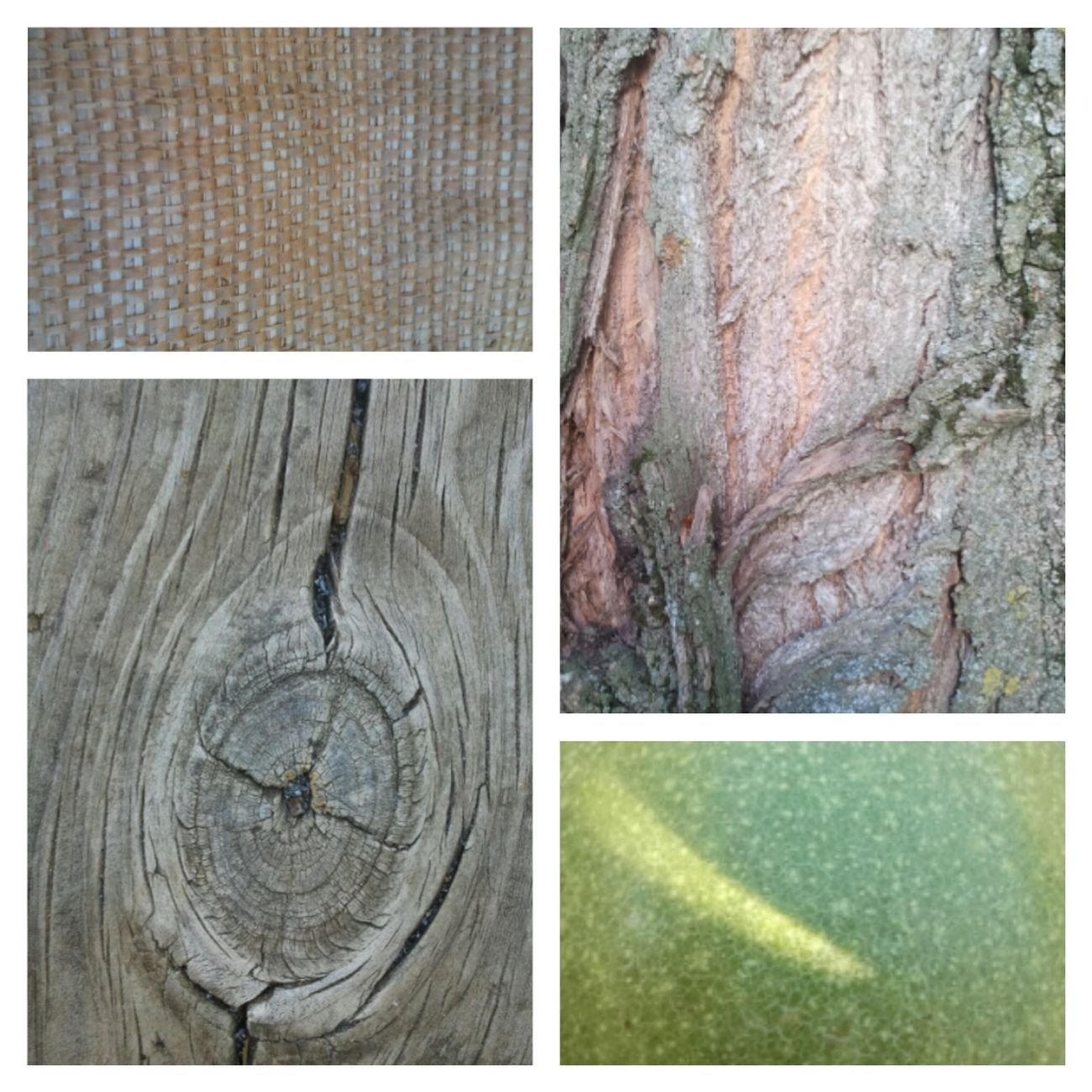 Texturas en Olmeda de las Fuentes Samsung Galaxy Camera Wood And Nuts Pueblos Colours Of Summer