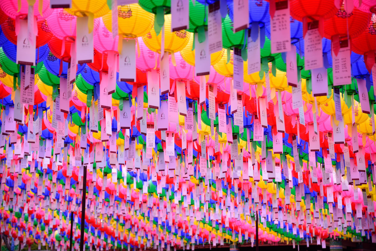 Abundance Backgrounds Buddha's Birthday Choice Close-up Day Large Group Of Objects Lotus Lantern Festival Multi Colored No People Variation Wishes