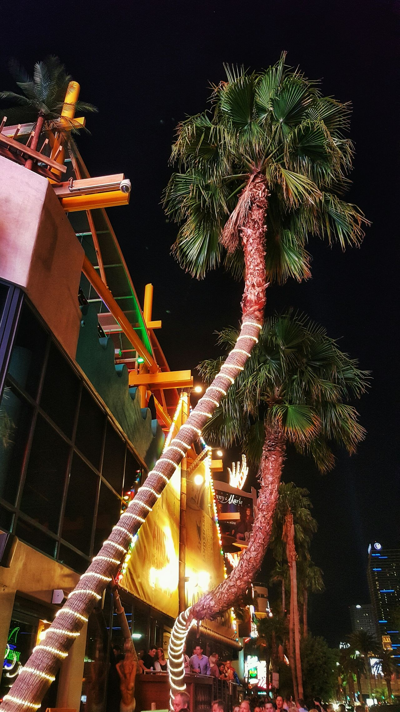 Cities At Night Palm Trees Las Vegas Blvd Las Vegas At Night Las Vegas Casino