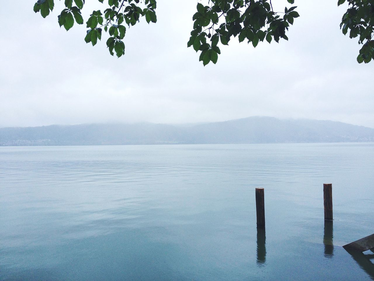 ↟The stillness of the water. Bodensee Water_collection Enjoy The Silence Quite Place Morning Vscocam Weroamgermany