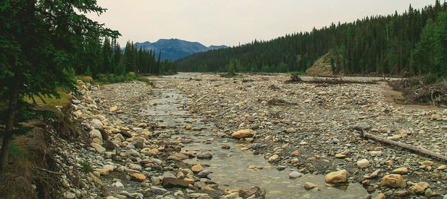 Hell or High Water Protecting Where We Play Sundre Alberta Canada Mountain