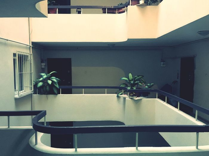 Architecture Building Exterior Built Structure Courtyard  Courtyard House Day Flower Growth Indoors  Interior Nature No People Plant