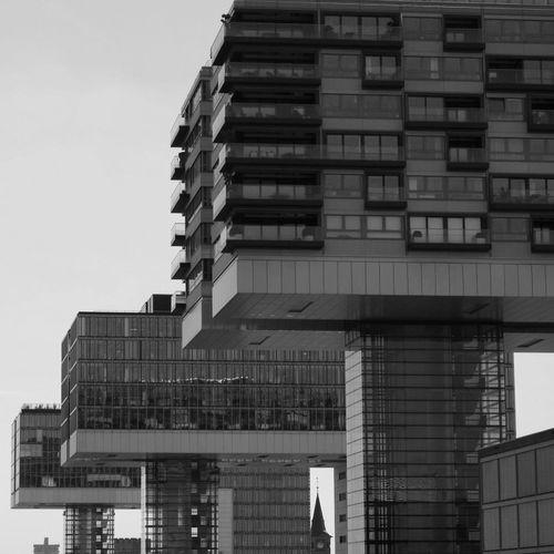 Kranhäuser Köln Blackandwhite Rheinauhafen Architecture