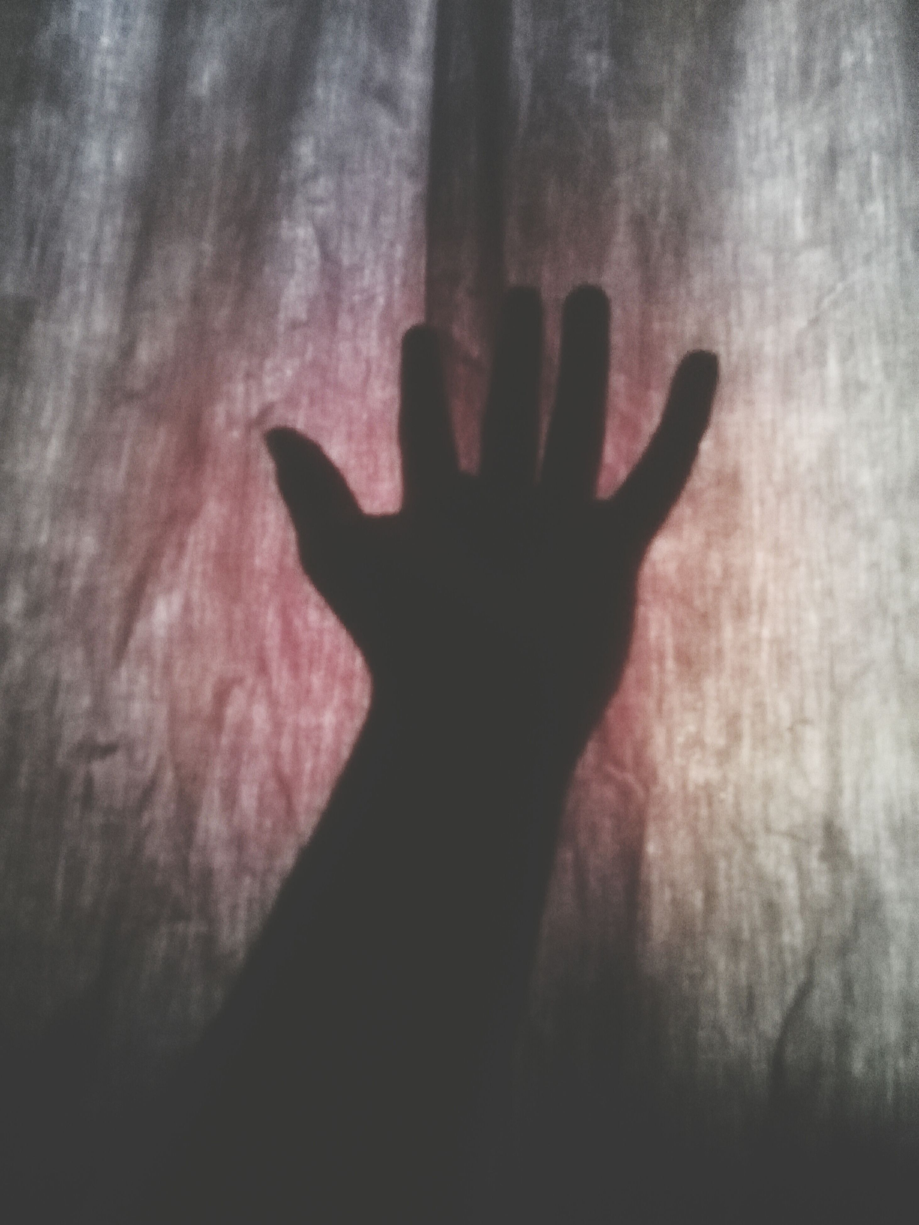 person, indoors, part of, human finger, unrecognizable person, shadow, silhouette, close-up, cropped, lifestyles, personal perspective, wall - building feature, sunlight, holding, men, high angle view