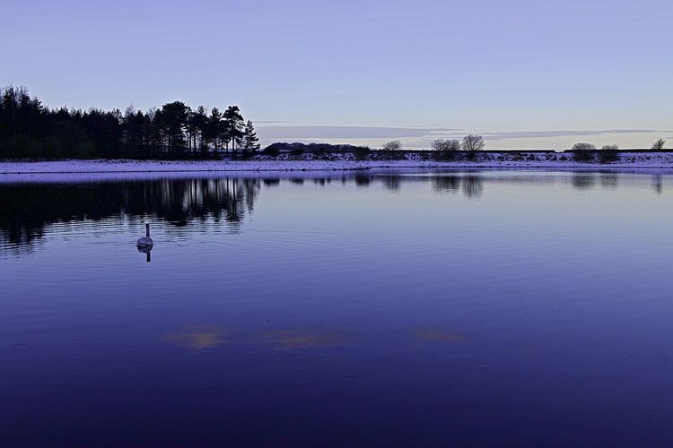 Early morning tranquility and a walk around Harlaw reservoir in the Pentland Hills. It doesn't get much better. Harlaw Reservoir Landscape Outdoors Pentlands Reflection Scotland Tranquil Scene Tranquility Water