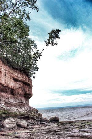 Precarious Canont3i Nova Scotia Beach Ocean