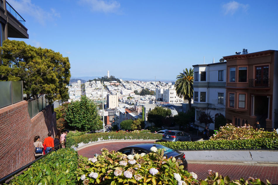 Lombard St., San Francisco, CA Architecture Calm City Citylife Cityscapes Day Lombard Street People Plant San Francisco Sky Sky And Clouds Steep Hill Streetphotography Tree