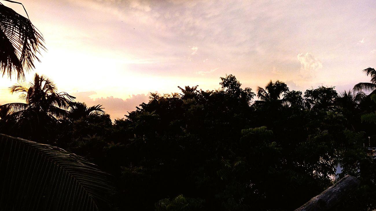 At CV sunset