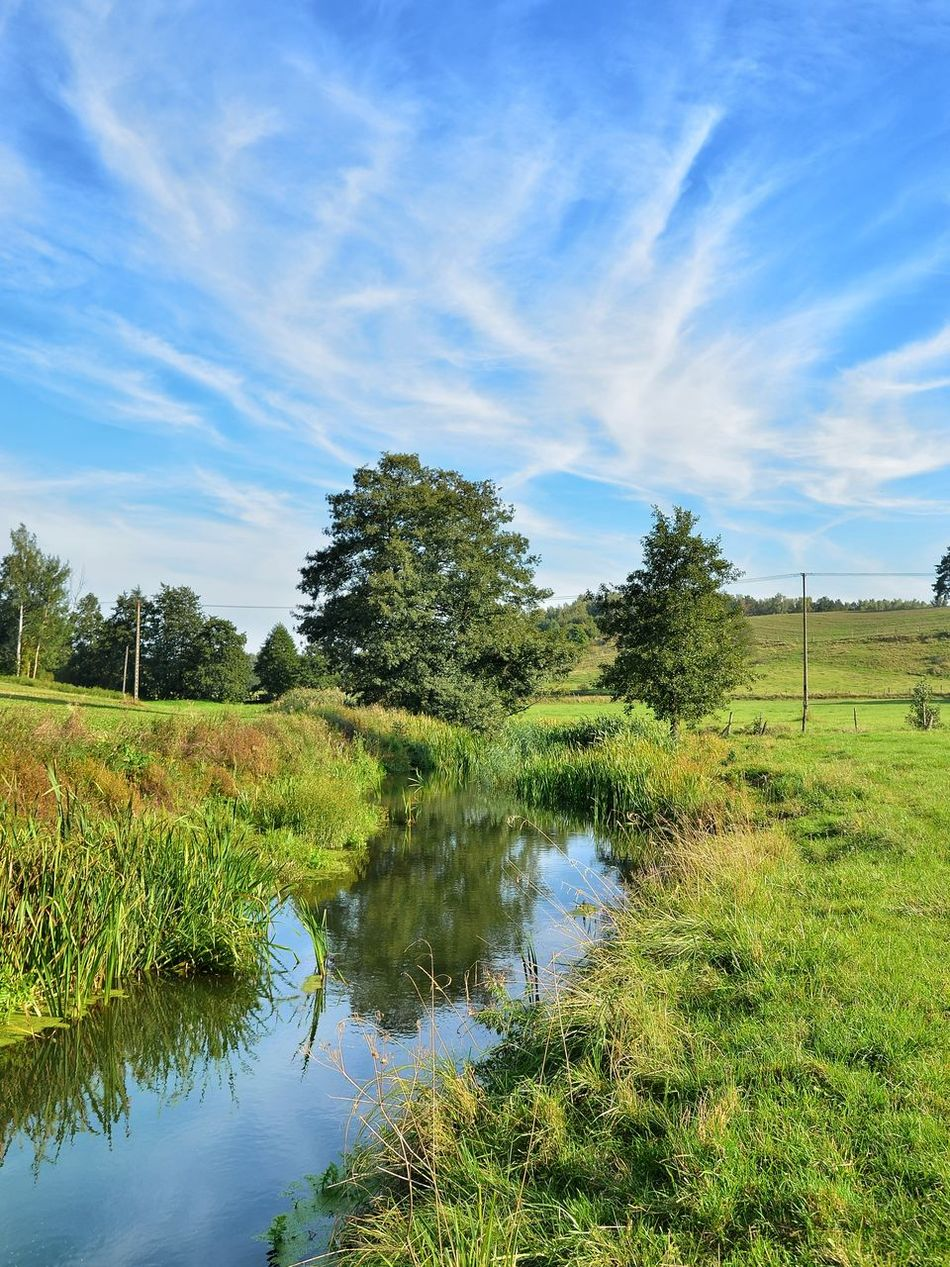 Reflection Water Agriculture Tree Cloud - Sky Sky Outdoors Nature No People Day Rural Scene Beauty In Nature Flood Irrigation Equipment River Rzeka Pasleka Poland Warmia Mazury Landscape Scenics