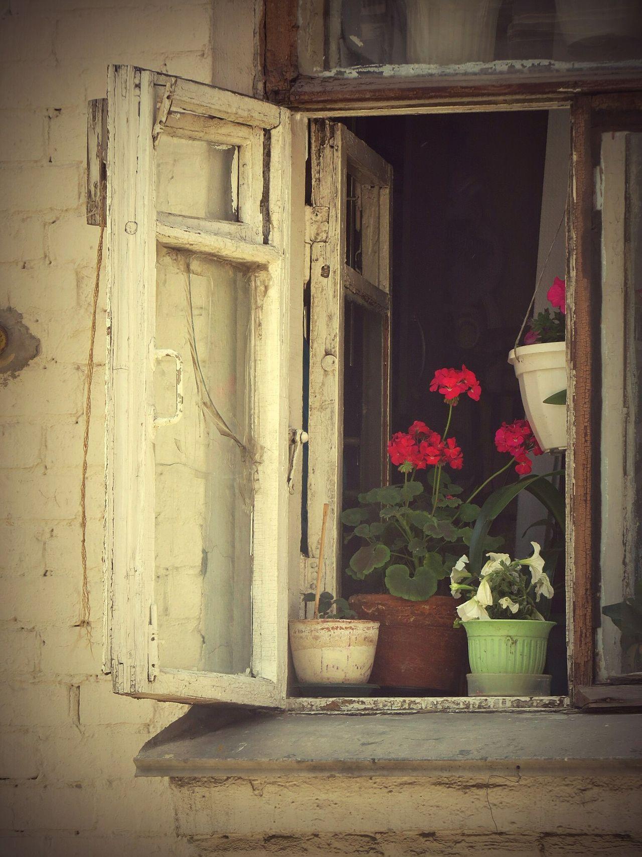 Holiday POV Nature On Your Doorstep Москва старое окно окномосквы Россия улицымосквы