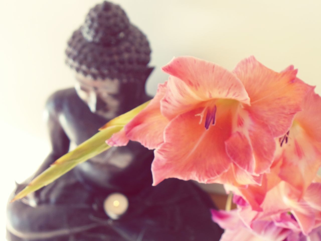 Weekend of Zen. Flower Zen Calm Serenity Serene Buddha Buddha Flowers Candlelight Meditation Yoga